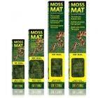 Exo Terra 10 Gallon Moss Mat