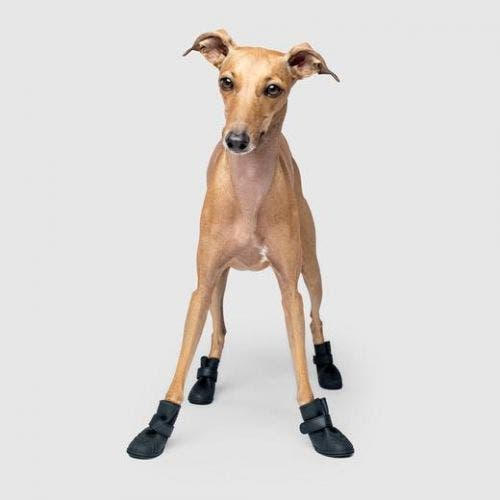 Canada Pooch wellies extra large black boots dog