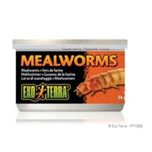 Exo Terra 1.2oz Meal Worms