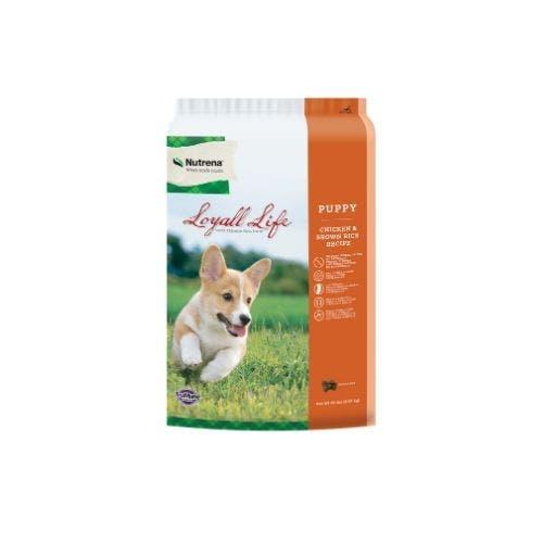 Loyall Life 20lb grain free puppy chicken dog food