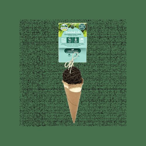 Oxbow celebration cone small animal
