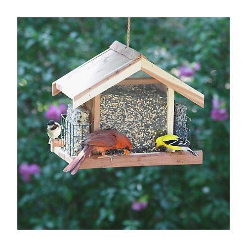 Perky pet chalet cedar deluxe feeder bird