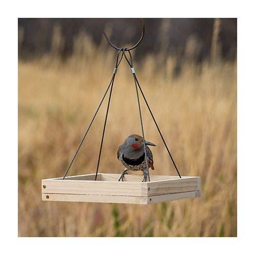 Perky pet hanging tray feeder bird