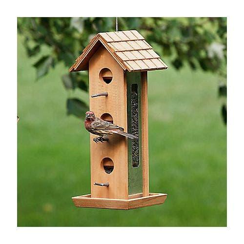 Perky pet wood tin jay feeder bird