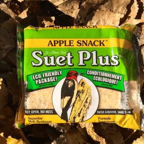 Suet Plus apple snack suet plus bird