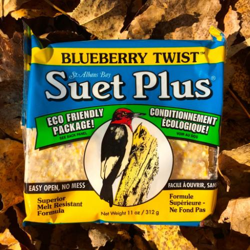 Suet Plus blueberry twist suet plus bird