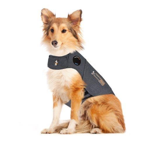 Thundershirt sport large light grey dog