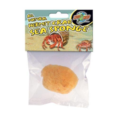 Zoomed Hermit Crab Sponges